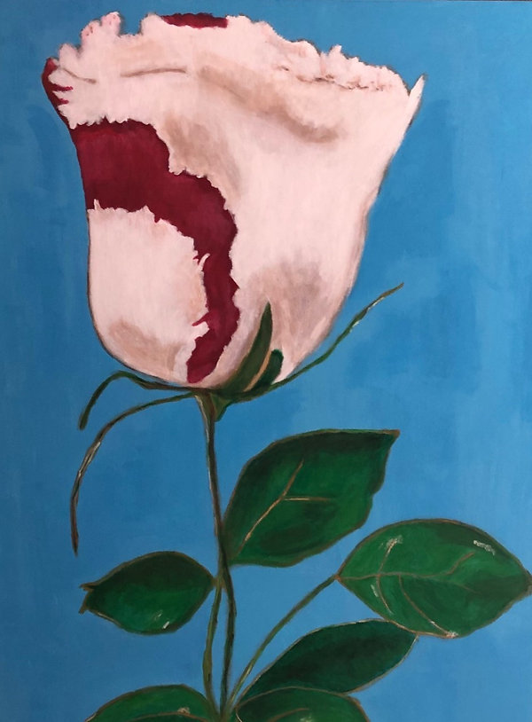 Rosebud 1.jpg