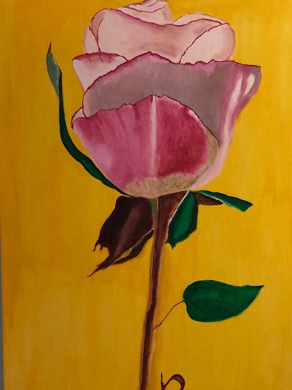 Rosebud 2.jpg