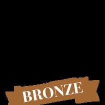 portrait masters bronze winner 2018