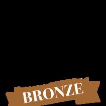 portrait masters bronze winner 2017
