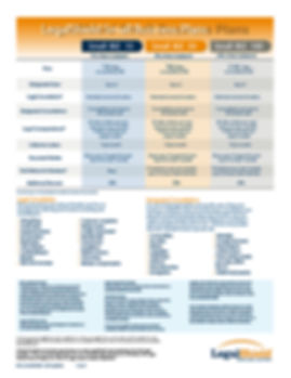 small business 10-50-100 flyer.jpg