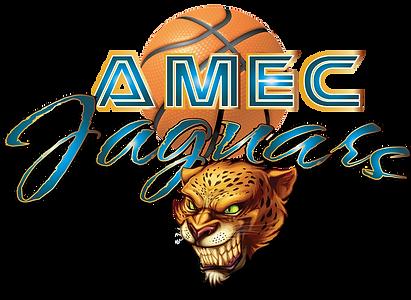 AMEC Jaguars Basketball Official Logo 20