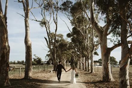 Langhorne Creek Wedding