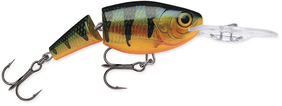 Rapala Jointed Shad Rap - Pearch - 5cm 8g