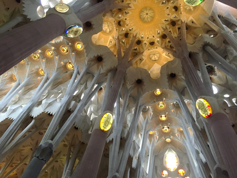 Barcelona: Elixir of eternal youth