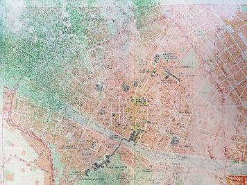sprayed map 2 copy.jpg