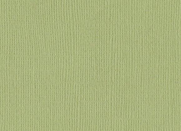 Cardstock - Pear