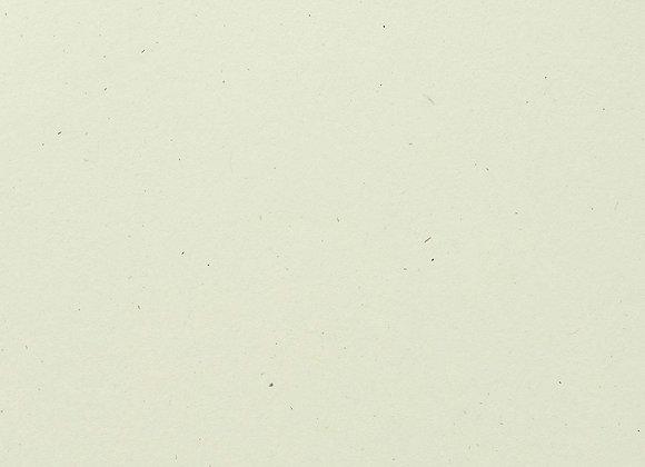 Cardstock -Limestone Speckle