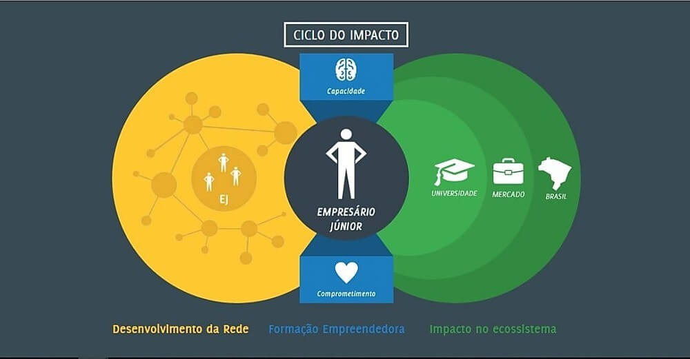 esquema que demonstra a organização do movimento empresa junior
