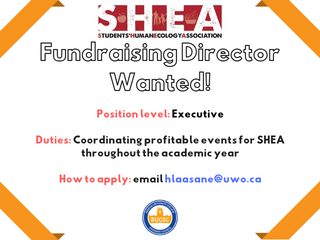 Fundraising Director Wanted!!