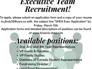 SHEA Exec Recruitment