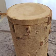 H11 Urne Pappel