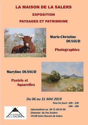 Affiche Salers Cantal.jpg