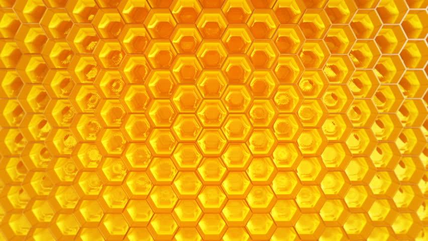 Honey.jpg