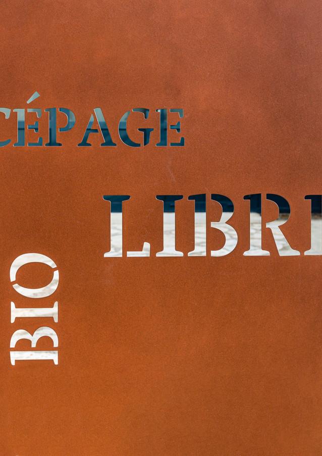 cépage-libre-0216.jpg