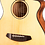 Thumbnail: Breedlove Discovery Companion Spruce Top Acoustic/Electric