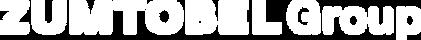 ZG_Logo_1903_wh.png