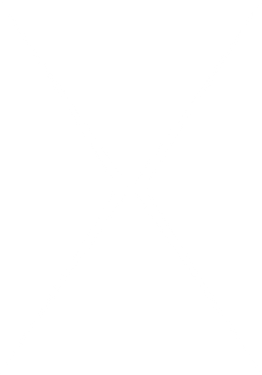 Asset 19_3x.png