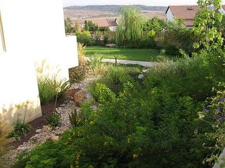 ערוץ נחל יבש בגינה