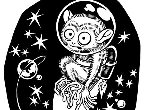 """Space Monkey!"""