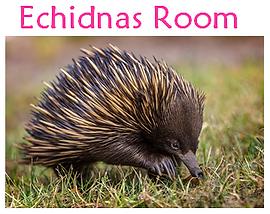 ECH Room.PNG