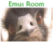 em room.PNG