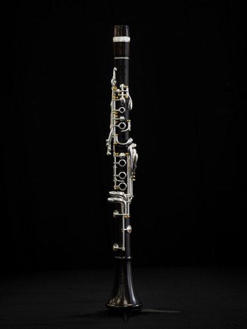NEW Royal Polaris Bb Clarinet