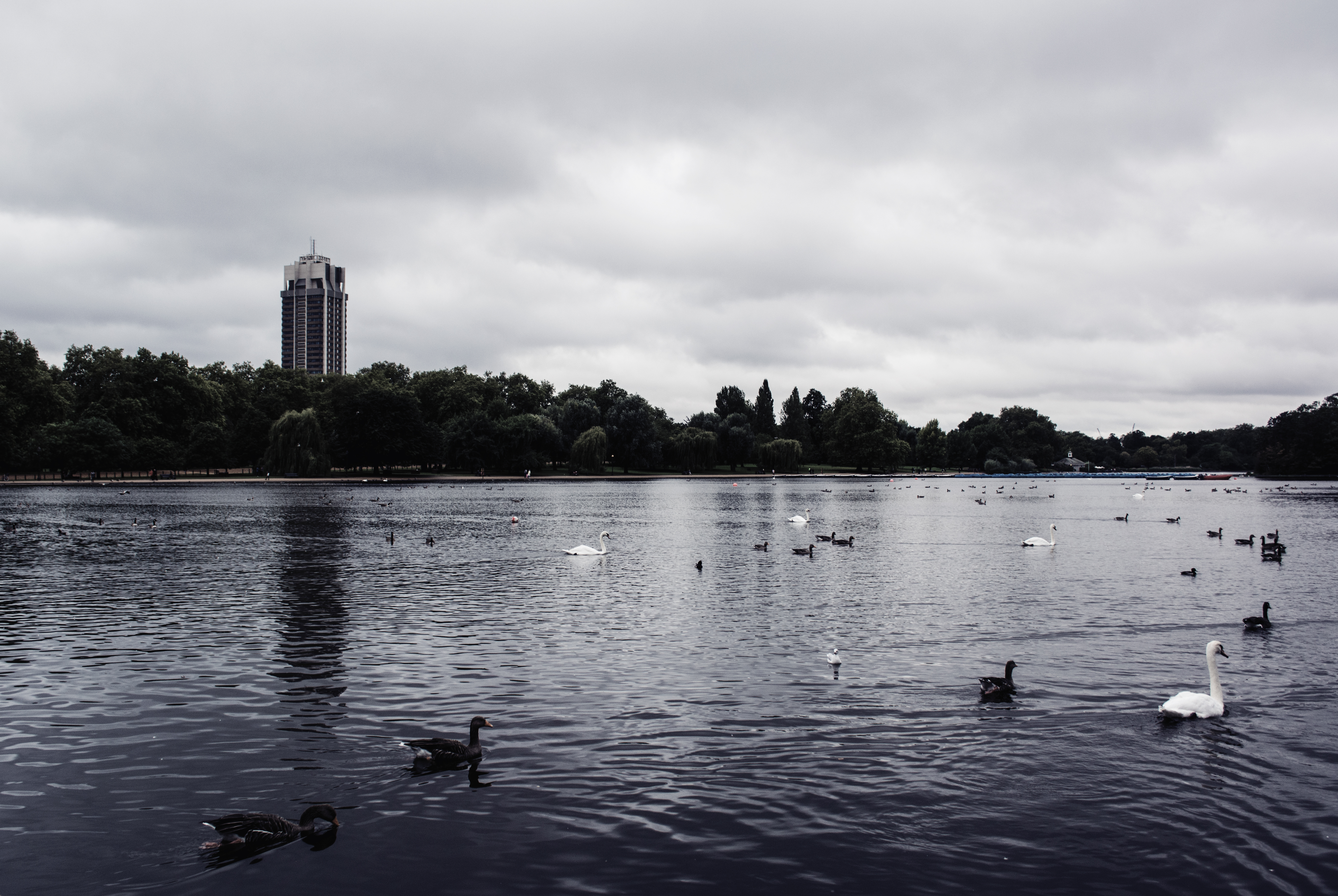 The Serpentine, Hyde Park | London