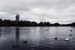 The Serpentine, Hyde Park | London