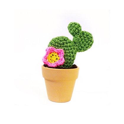 Floral Succulent