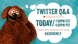 The Muppets - Twitter Q & A