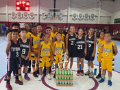 10U - Yellow Jackets and Typhoons