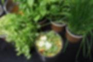 Verde Catering vegetables
