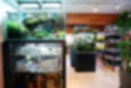 Shop Front sm.jpg