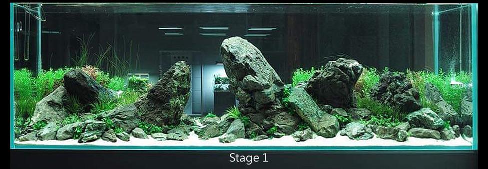 stage 1.jpg