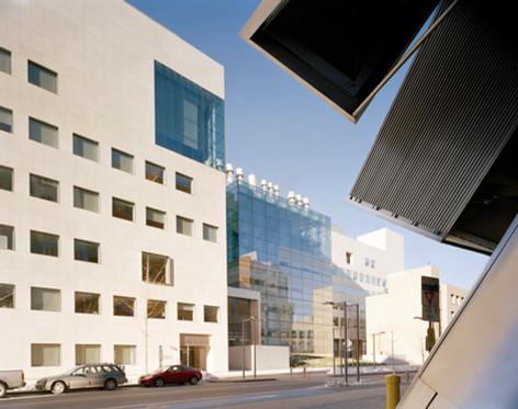 MIT / Brain + Cognitive Research Center