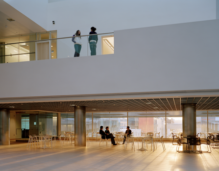 MIT Brain + Cognitive Research Center
