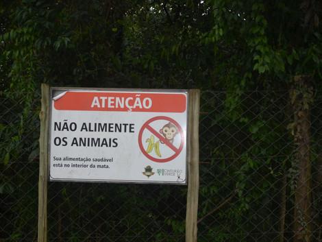 Placa proíbe alimentar animais do Cinturão Verde, mas não há leis que consigam barrar a destruição