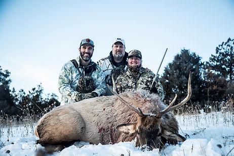 Berberich, Brady Elk 2.jpg