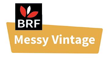 Messy Vintage logo-2.png