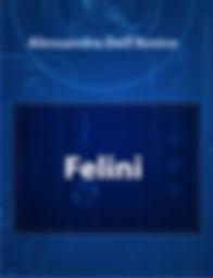FELINI 1.JPG