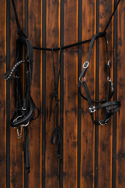 Eine Trense, ein Knotenhalfter und ein Lederhalfter hängen an einer Holzwand