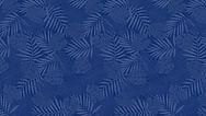 160715_Fondo Azul Oscurro_Pantalla.jpg