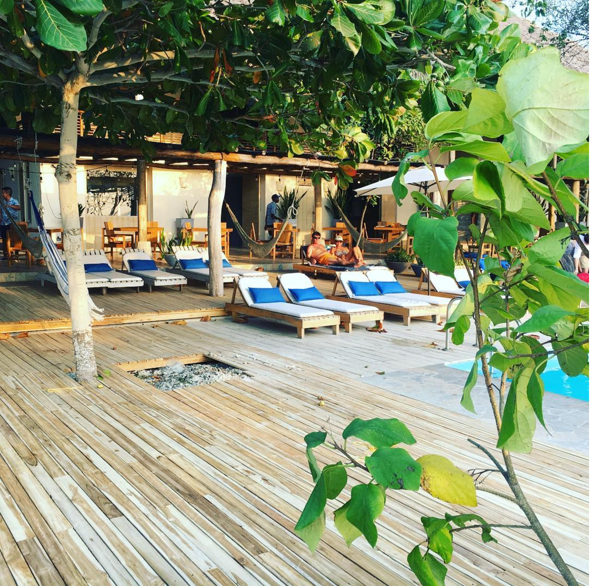 Teak Deck at Blue Apple