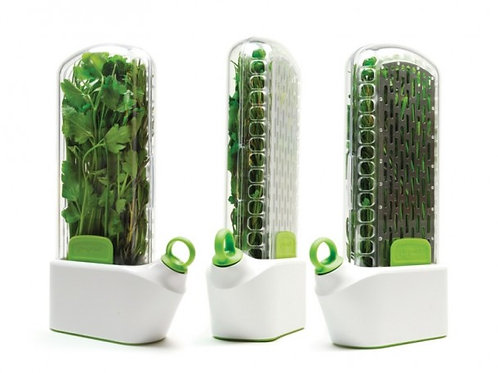 Vegetable Time Capsules - 4 inch