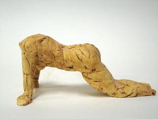 Yoga Study: Cat Cow