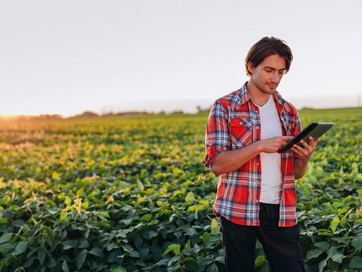 Internet para zona rural: TIM Agro tem projeto para melhorar conexão no campo