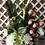 Thumbnail: M 01/ Arreglo con orquídea y rosas