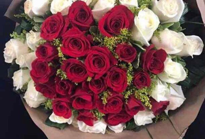 48 rosas