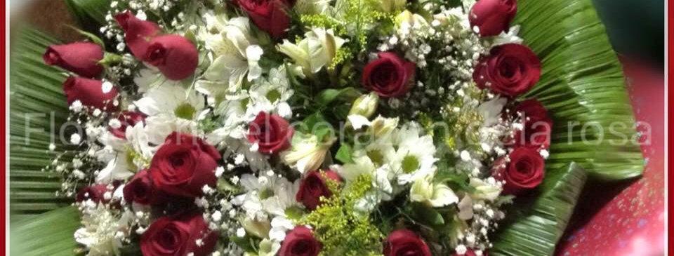M48/Rosas decoradas con primaveral